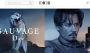Dior USA Official Website: DIOR US